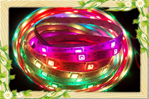 Dream color 12V WS2811 led strip light