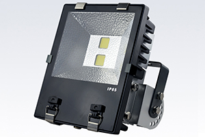 100W Economic Finned LED Flood Light